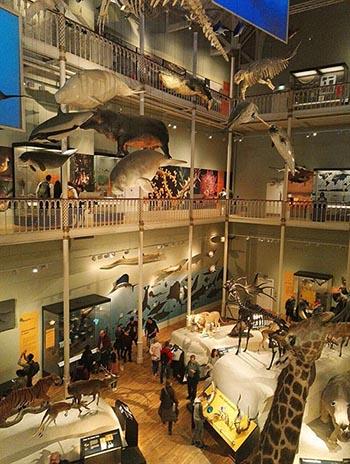 musée national d'Edimbourg
